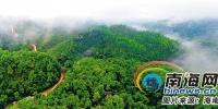 海南不断探索多种生态补偿机制 守护森林生态资源 - 环境保护局