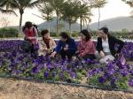 苻彩香在三亚调研指导妇女经济发展工作 - 妇女联合会