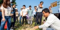 海南推广应用全生物降解地膜 首批试点农田近1万亩 - 海南新闻中心