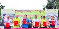 乐享乡村游 保亭红毛丹采摘季13日正式启动 - 海南新闻中心