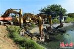 """退塘还林近900亩 海口江东新区打响生态修复""""第一枪"""" - 环境保护局"""