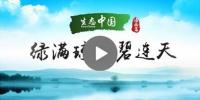 生态中国·绿满琼崖碧连天 - 海南新闻中心