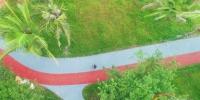 海口红城湖公园项目今年9月底前完工 - 海南新闻中心