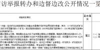 中央生态环保督察组向海南移交的第三十一批举报件已办结29件 - 海南新闻中心