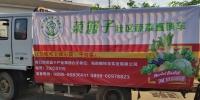 """家门口就能买到""""一元菜"""" 海口首批社区蔬菜直销车进小区了 - 海南新闻中心"""