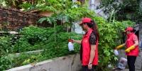 海口市美兰区掀起爱国卫生运动热潮 - 海南新闻中心