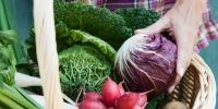 """""""两节""""期间,三亚将在74个平价网点15个大中型超市投放蔬菜和猪肉 - 海南新闻中心"""