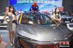 """2020年海南车市""""第一个大展""""启幕 - 中新网海南频道"""