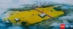 """打造城市田园景观 海口江东田园4号基地铺""""绿毯"""" - 海南新闻中心"""