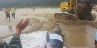一头小抹香鲸在文昌海滩搁浅 已被送往陵水救治 - 海南新闻中心