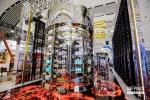 科技感升级时尚消费场景 海口唯一超大全息屏亮相消博会5号馆 - 海南新闻中心